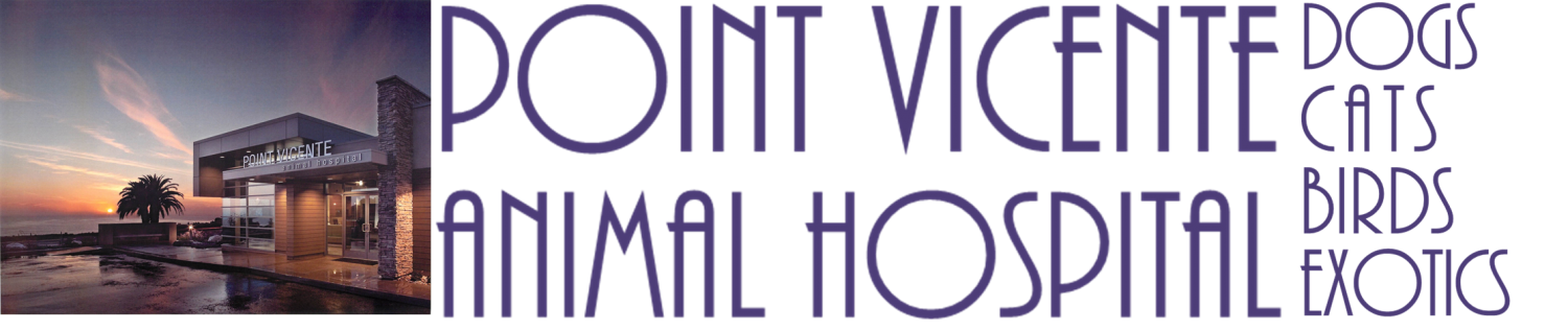 Point Vicente Animal Hospital Rancho Palos Verdes California